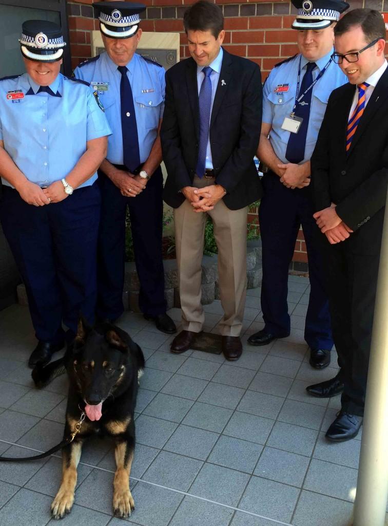 Dog Squad 1