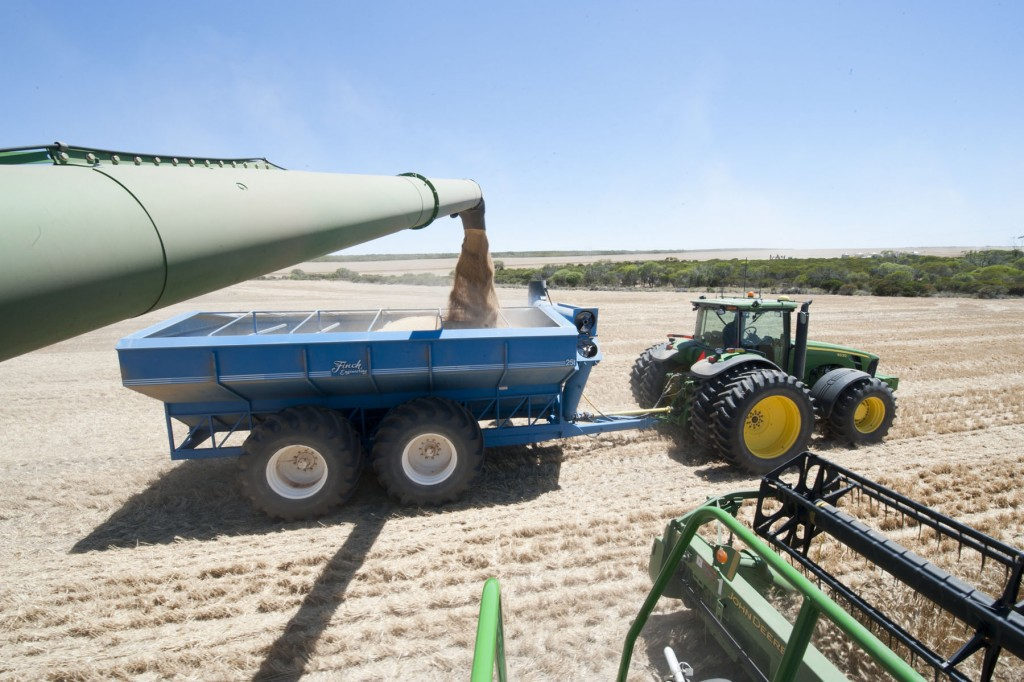 Wheat harvesting on Bob PRESTON'S farm at Mingenew. View of grain pouring from the harvester into the tray of a trailer towed alongside by a tractor.