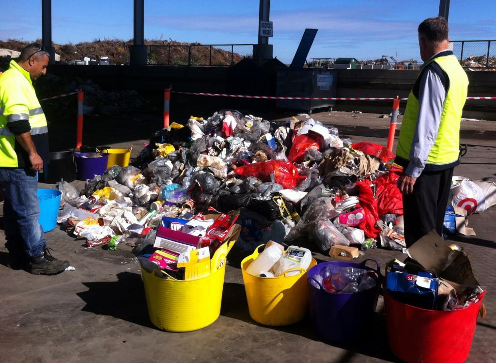 IMG_0866 audit waste bins