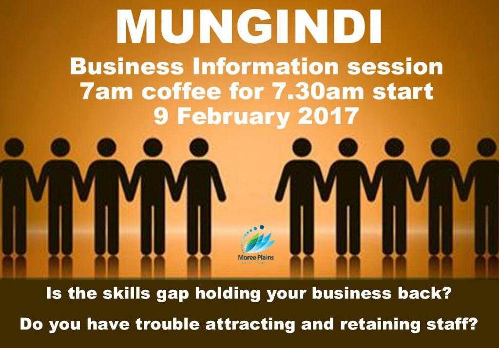 2017-02-08 Business Information Mungindi