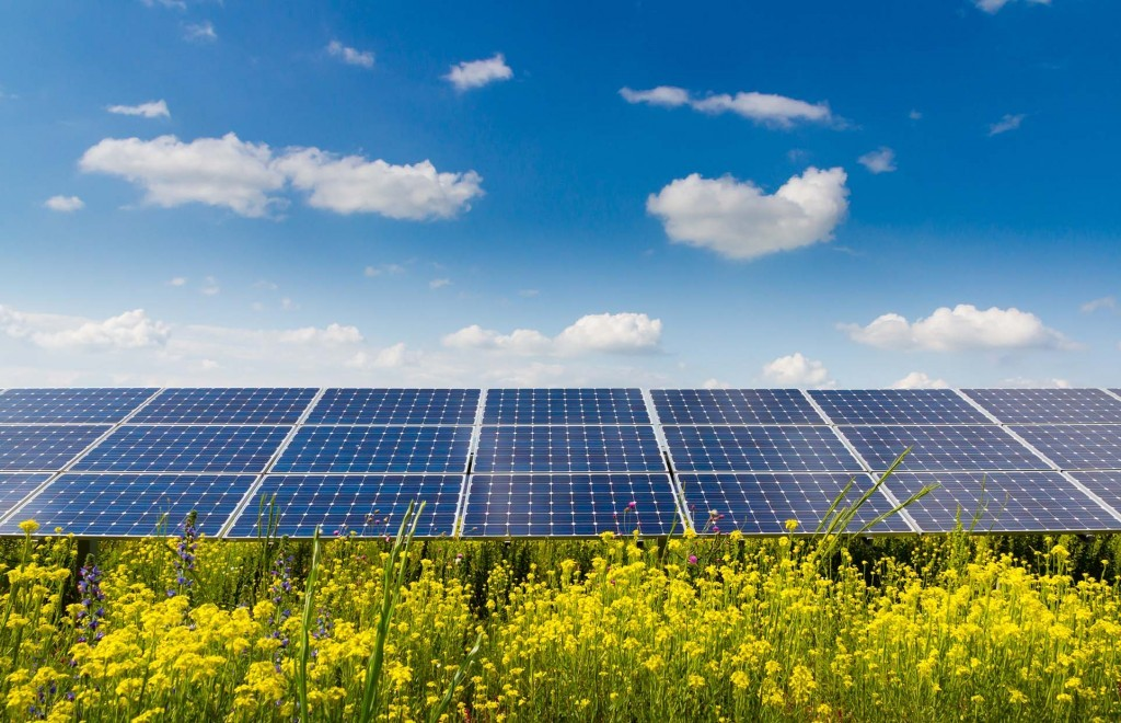 ScaleWidthWyIxMDI0Il0-solar-panels-in-field